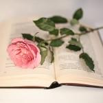Hyvää kirjan ja ruusun päivää!