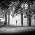 Lady in Mist