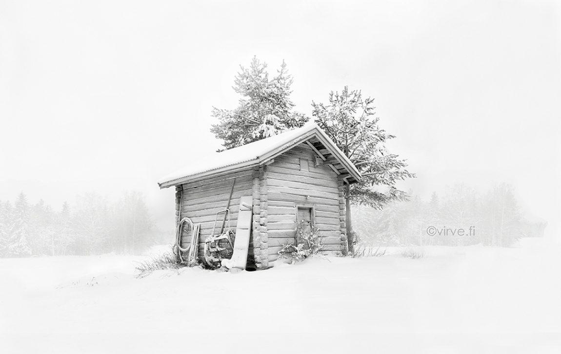 Solitude in White won bronze